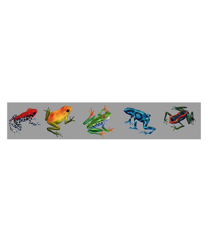 FROGS OF THE RAINFOREST STICKER