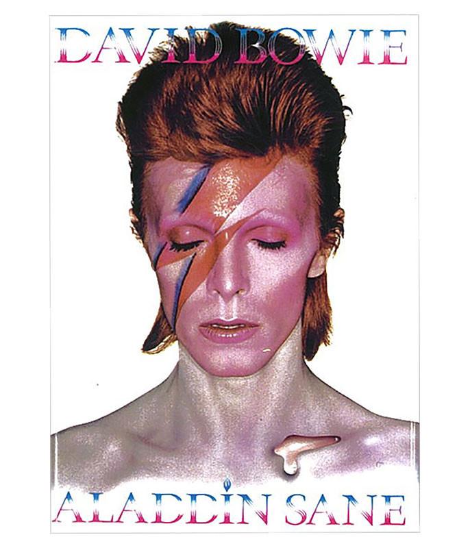 Bowie Aladdin Sane Magnet