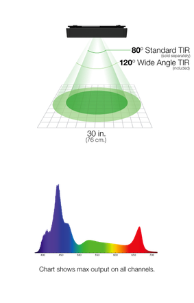 fw-spectrum-spread-1-.png