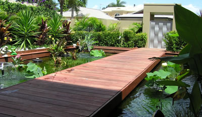 Aquarium maintenance sydney aquarium installation sydney for Outdoor fish pond care