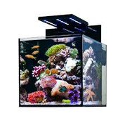 Blenny Advanced nano aquarium 80L