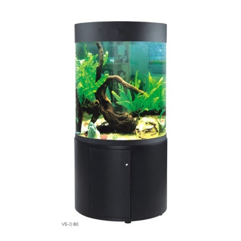 Round aquariums sydney discus world aquariums online for Grand aquarium rond