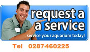 Aquarium servicing 2ft Saltwater