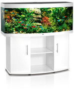 Juwel Vision 180W Curved Glass Aquarium and Stand