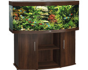 Juwel Vision 180D Curved Glass Aquarium and Stand