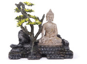 Buddha and Plant Medium