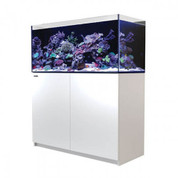 Red Sea REEFER 350 White