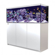 Red Sea REEFER 450 White