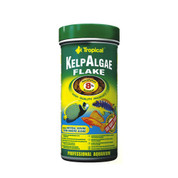 Tropical Kelp Algae Flake 300ml / 55g
