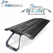 Maxspect Recurve R6 Series 90cm