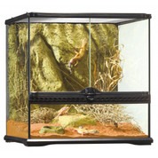 Exo Terra All Glass Small Wide Terrarium 45x45x45cm