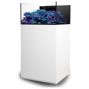 WATERBOX PLATINUM FRAG 60.3 White