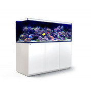 Red Sea Reefer XXL 750 Complete System - White