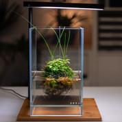 DOOA Neo Glass AIR W15xD15xH25cm