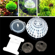 MOSS BALL PLASTIC HOLDER 6 Pack