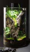 Bioscape Nano Moss Terrarium - 200 Cylinder 10W