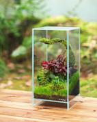 DOOA Neo Glass AIR W15xD15xH30cm