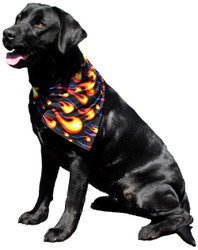 """Windhorse Dazzle Ties™ are a great way to add color to your pet's wardrobe.  Use as a bandana, or tie to your pets collar or leash.  These fun ties can be used alone or as an accessory to complete an outfit.  They come in a wide assortment of solid, print or foil spandex colors.  Available in 4 sizes.  Long Edge Dimensions:  Small - 14""""  Medium - 19.5""""  Large - 28""""  Xlarge - 36.5"""""""