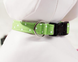 """Green Polka Dot Chasin' Tail Collar  Chasin' Tail Doggie Designs are special handmade creations.  Each piece is made by hand, with care, in Boring Oregon.   Chasin' Tail collars are adjustable and available in 5 sizes.  Collars are made from a washable fabric.  Gently wash and hang to dry.  Chasin' Tail dog collars can be ironed with a cool iron to remove wrinkles if they should appear.  Chasin' Tail collars come in the following """"Neck Size Range""""  XS fits a 7"""" - 11"""" neck  SM fits a 10"""" - 15"""" neck  Med fits a 12"""" - 19"""" neck  LG fits a 15"""" - 24"""" neck  XL fits a 17"""" - 29"""" neck     Chasin' Tail also offers matching handmade leashes and cute collar accessories like Bow Ties and Flowers.  Look for them to order and complete your pet's special look."""