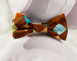 "Chasin' Tail Doggie Designs are special handmade creations.  Each piece is made by hand, with care, in Boring Oregon.  Chasin' Tail Bow Ties are fun and attractive collar accesories.  These Bow Ties are available in 3 sizes and attached to your Chasin' Tail collar or any other collar with hook and loop attachments.  Bow Ties are made from a washable fabric.  Gently wash and hang to dry.  Chasin' Tail dog collar Bow Tie accessories can be ironed with a cool iron to remove wrinkles if they should appear.  Chasin' Tail Bow Ties come in the following sizes,  SM - measures 4"" in length  Med - measures 5"" in length  LG - measures 6"" in length   Chasin' Tail also offers matching handmade leashes, collars, and other accessories like fun Flowers to dress up any collar.  Look for them to order and complete your pet's special look."