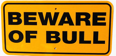 "Beware of Bull / 6""x12"" / Yellow & Black"