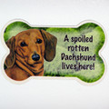 A spoiled rotten dachshund lives here boneshaped magnet