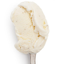 Cedarwood Vanilla - Jeni's Splendid Ice Creams