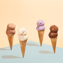 Berries & Chocolate Collection - Jeni's Splendid Ice Creams