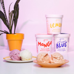 Buttermilk Frozen Yogurt Collection - Jeni's Splendid Ice Creams