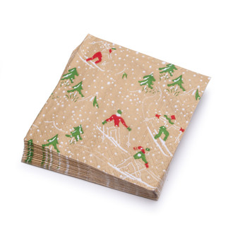 Paper Cocktail Napkins Boxed, Winter Sport