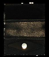 Mojo Advantage Equine & Pets Black Leather (Set of 2 Patches)