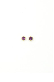 Lover's Tempo Astrid Stud Earrings in Amethyst
