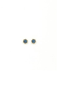 Lover's Tempo Astrid Stud Earrings in Montana