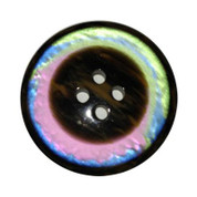 Four Hole Rainbow Button #352