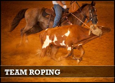 teamroping.jpg