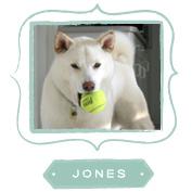 about-jones.jpg