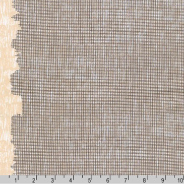 Harriot by Carolyn Friedlander - Screen Single Border in Charcoal