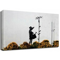 Banksy Canvas Print - Flower Aerial