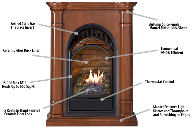 free electric insert safety gas fireplace inch sided reviews fires ventless vent boulevard double fireplaces linear through heaters see propane fire
