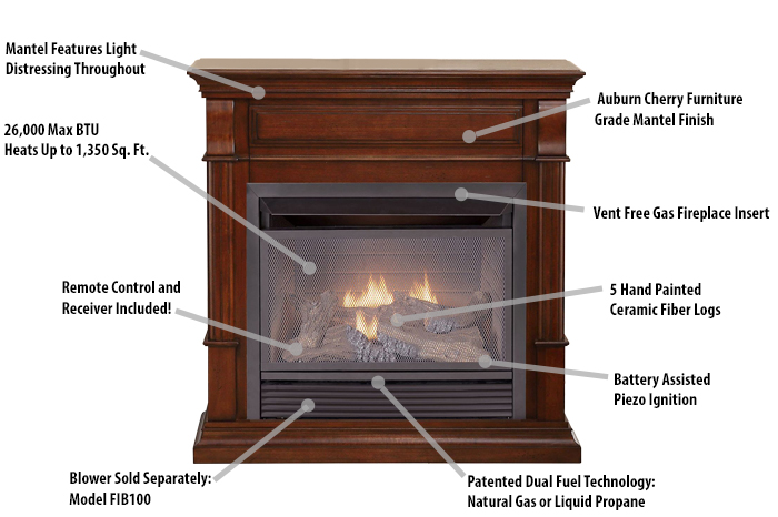 Fireplace Features