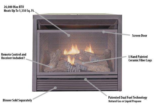 Duluth Forge Dual Fuel Ventless Fireplace Insert - 26,000 BTU ...