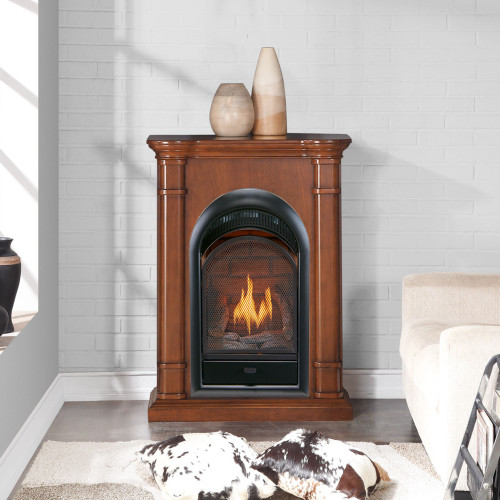 170041 - Contemporary Gas Fireplace Setting