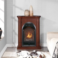 170043 - Contemporary Gas Fireplace Setting