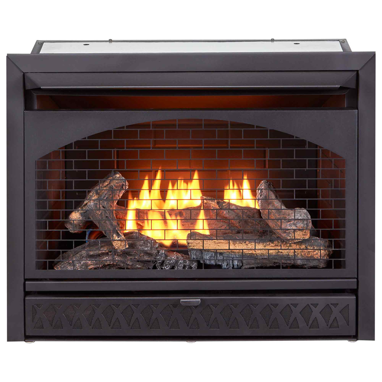 Procom Fireplaces 29 In Ventless Dual Fuel Firebox Insert Fbnsd28t