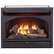 Procom Fireplaces 29 in. Ventless Dual Fuel Firebox Insert FBNSD28T