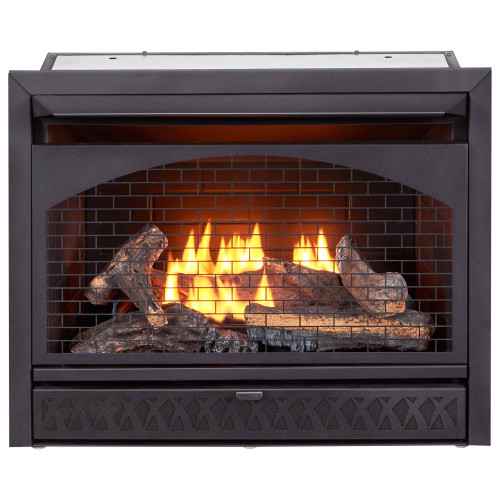 Procom Fireplaces 29 in. Ventless Dual Fuel Firebox Insert.