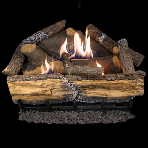 Cedar Ridge Hearth Recon 24-in 32,000-BTU Dual-Burner Ventless Gas ...