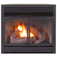 ProCom Heating Dual Fuel Ventless Fireplace Insert - 32,000 BTU, Thermostat Control, FBNSD400T-ZC (170115)