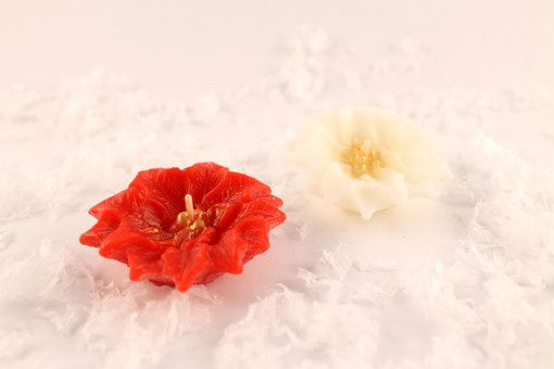 Beeswax Floating Poinsettia Candles in Red and Ivory