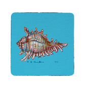 Conch Coasters - Set of 4